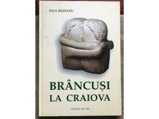 Brancusi la Craiova, Paul Rezeanu
