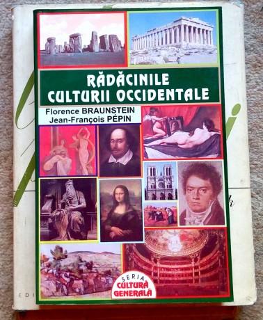 radacinile-culturii-occidentale-florence-braunstein-big-0