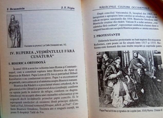 radacinile-culturii-occidentale-florence-braunstein-big-3