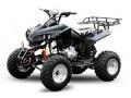 oferte-speciale-de-vara-atv-nitro-motors-akp-warrior-small-1