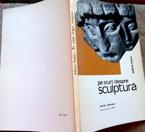 pe-scurt-despre-sculptura-adina-nanu-1966-big-1