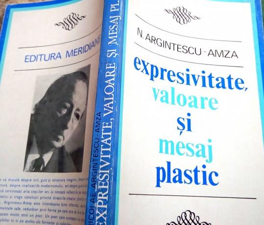 expresivitate-valoare-si-mesaj-plastic-n-argintescu-amza-big-1