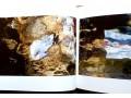 biblioteca-scufundata-ileana-florescu-small-3